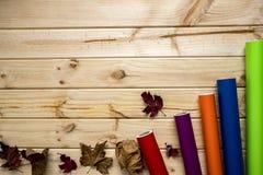 在木背景的秋季五颜六色的乙烯基卷 免版税库存图片