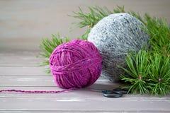 在木背景的紫红色和灰色花呢毛线在杉木树附近分支  免版税库存图片