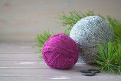 在木背景的紫红色和灰色花呢毛线在杉木树附近分支  库存照片