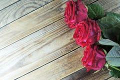 在木背景的红色玫瑰 免版税库存照片