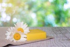 在木背景的自然手工制造肥皂和春黄菊花 库存图片