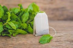 在木背景的茶袋用新鲜的蜜蜂花,薄菏 与薄荷的概念的茶 免版税库存照片