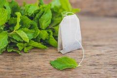 在木背景的茶袋用新鲜的蜜蜂花,薄菏 与薄荷的概念的茶 免版税库存图片