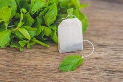 在木背景的茶袋用新鲜的蜜蜂花,薄菏 茶与 库存照片