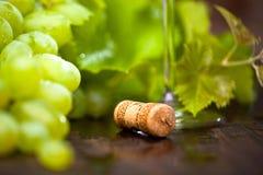 在木背景的葡萄酒与酒黄柏 图库摄影