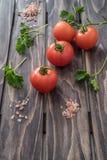 在木背景的蕃茄荷兰芹和盐 库存照片