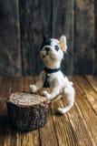 在木背景的被编织的狗法国牛头犬 库存照片