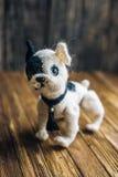 在木背景的被编织的狗法国牛头犬 图库摄影