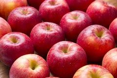 在木背景的许多红色苹果。 免版税库存图片