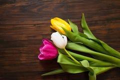 在木背景的郁金香 免版税图库摄影