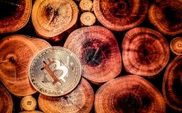在木背景的金黄Bitcoin 免版税图库摄影