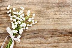 在木背景的铃兰花 免版税图库摄影