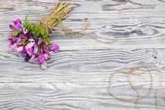 在木背景的银莲花属 图库摄影