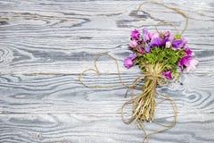 在木背景的银莲花属 免版税图库摄影
