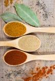 在木背景的香料粉末 在辣椒粉、咖喱和姜的特写镜头 免版税库存图片
