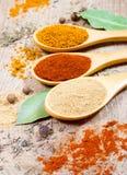 在木背景的香料粉末 在辣椒粉、咖喱和姜的特写镜头 库存照片