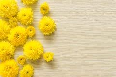 在木背景的黄色菊花,自由空间 免版税库存图片