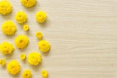 在木背景的黄色菊花,自由空间 库存照片