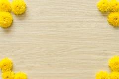 在木背景的黄色菊花,自由空间 图库摄影