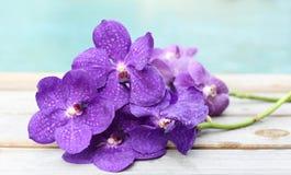 在木背景的紫色兰花 免版税库存图片