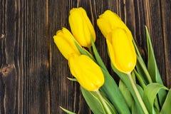 在木背景的黄色郁金香 库存图片