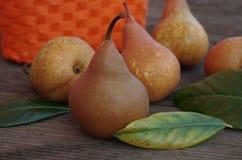 在木背景的Organice新鲜的梨 免版税库存照片