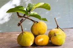 在木背景,与绿色leaf的黄色santol的Santol果子 库存照片