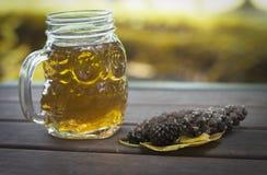 在木背景,户外,秋天概念的杯子茶或咖啡和锥体 图库摄影