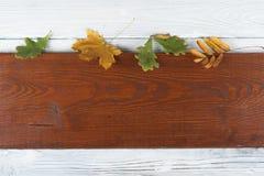 在木背景,文本的拷贝空间的五颜六色的秋叶 顶视图 库存照片