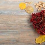 在木背景,文本的拷贝空间的五颜六色的秋叶 顶视图 库存图片