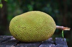 在木背景(面包果heterophyllus)的波罗蜜 免版税图库摄影