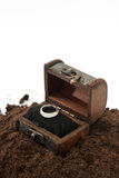 在木胸口的金黄圆环在土壤 免版税库存照片