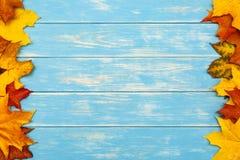 在木蓝色背景的边的秋叶 免版税库存图片