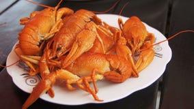 在木表上的煮熟的红色小龙虾在鱼餐馆 股票录像