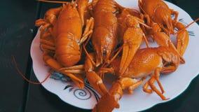 在木表上的煮熟的红色小龙虾在鱼餐馆 影视素材