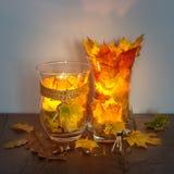在木表上的秋天灯笼 库存照片