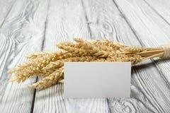 在木表上的麦子耳朵与空白的名片 捆在木背景的麦子 收获概念 免版税库存照片