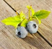 在木表的蓝莓 免版税库存图片