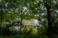 在木质的湖边附近的被操刀的人行桥在晴朗的夏天早晨 库存照片
