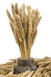 在木轮子的麦子花束 免版税图库摄影