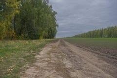 在木边缘的土路 免版税图库摄影