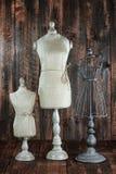 在木难看的东西背景的古色古香的时装模特胸象 库存照片