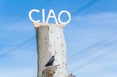 在木头写的Ciao 免版税库存图片