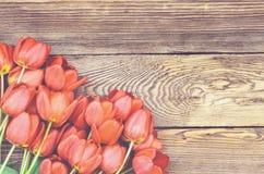 在木织地不很细背景的新鲜的红色郁金香 免版税图库摄影