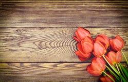在木织地不很细背景的新鲜的红色郁金香 库存照片