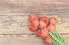 在木织地不很细背景的新鲜的红色郁金香 免版税库存照片