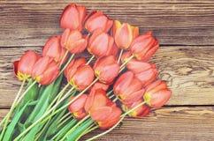 在木织地不很细背景的新鲜的红色郁金香 免版税库存图片