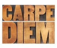 在木类型的Carpe Diem 库存图片