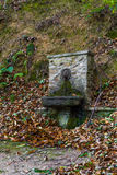在木头的喷泉 库存图片