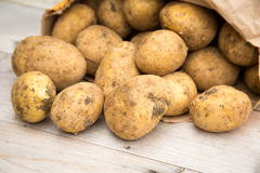 在木头的土豆 免版税库存图片
